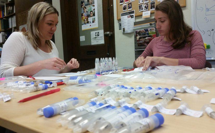 Lab staff members work with salivary tubes.